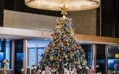 Light up your commercial premises this Christmas with  a superbly decorated Tree